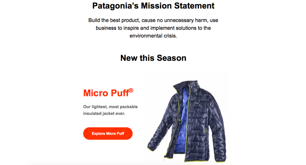 patagonia email example shows mission statemnt