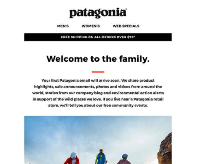 patagonia email example shown in mobile format