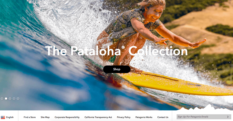 patagonia homepage shows easy sign up form